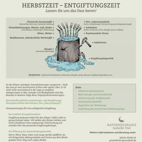 Praxismarketing – Infografik Entgiftung